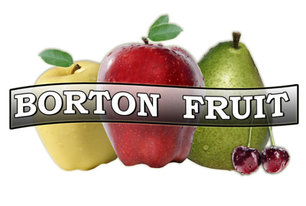 logo of Borton Fruit