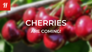 Spectre for Cherries is coming
